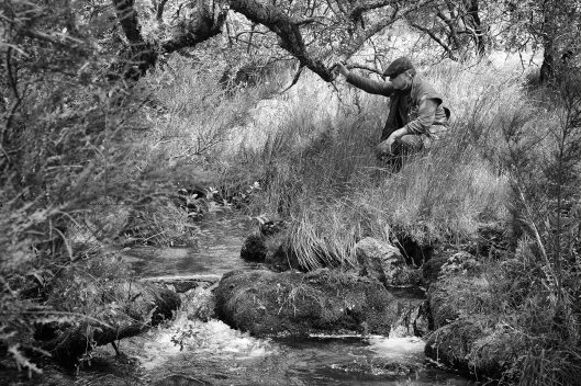 Dartmoor trout fishing